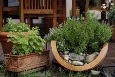 Container Inspiration Gallery - Using a broken clay pot
