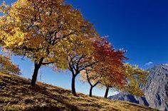 hunza valley autumn Pakistan