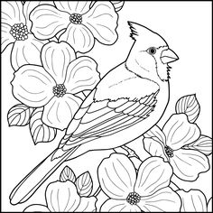 New Winter Wood Crafts Diy Wooden Snowmen Ideas Bird Coloring Pages, Pattern Coloring Pages, Coloring Books, Wood Burning Patterns, Wood Burning Art, Bird Embroidery, Embroidery Patterns, Art Patterns, Cardinal Drawing
