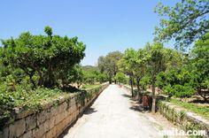 Buskett Garden - Rabat, Malta