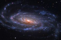 Spiral Galaxy NGC lies some 40 mly away in the constellation Canes Venatici. The arms span over ly. The bright nucleus and rotational center of the galaxy seem to be slightly offset, suggesting NGC 5033 is the result of an ancient galaxy merger. Cosmos, Infinity Pictures, Astronomy Pictures, Spiral Galaxy, Star Cluster, Dark Matter, To Infinity And Beyond, Space Travel, Space Exploration