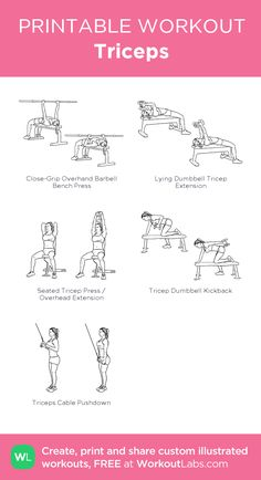 Fitness Workouts, Planet Fitness Workout Plan, Gym Workout Plan For Women, Fitness Workout For Women, Biceps And Triceps, Biceps Workout, Chest And Tricep Workout, Bicep And Tricep Workout, Forearm Workout