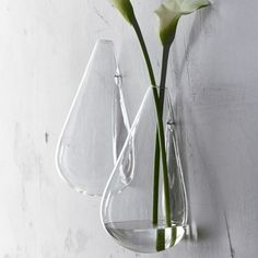 """wall flower.   Experiment with nature.  Handblown chemistry lab borosilicate beaker glass in a simple tear shape wall-hangs via a cut and polished opening. HandblownStrong borosilicate (""""beaker"""") glassHand washMade in China."""