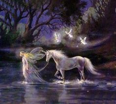 fairy and the unicorn