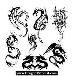 Dragon Tattoos Pictures Men 08 - http://dragontattooist.com/dragon-tattoos-pictures-men-08/
