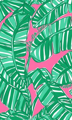 This Lilly print background works so well with the Lilly Pulitzer Kappa Delta iPhone case! It's kinda hard to find matching pinks/greens.