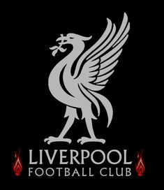 Liverpool Fc Wallpaper, Liverpool Wallpapers, Liverpool Football Club, Counting, Movie Posters, Film Poster, Billboard, Film Posters