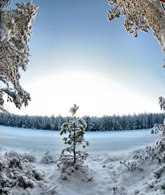 Image result for pretty winter scenes