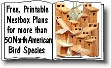 Free, Printable, Nestbox Plans For More Than 50 North American Bird Species