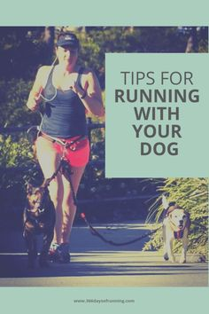 Tips for running with your dog tips and equipment when can your puppy run running partner or buddy running with a working dog running with a beagle Running Routine, Running Plan, Running Workouts, Running Tips, Trail Running, Running Humor, Workout Exercises, Workout Routines, Running Training Programs