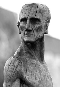 Mr._fulmen-old_wood_can_assume
