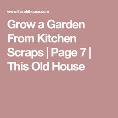 Grow a Garden From Kitchen Scraps   Page 7   This Old House