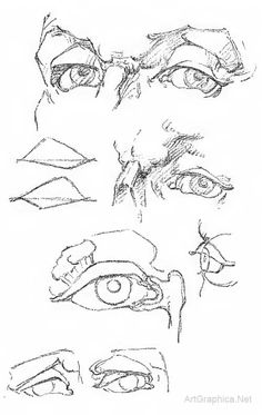 Drawing Ears, Eyes, Mouth and Nose Page 08 / 12 Art Book for Learning Human Anatomy - See more at: http://www.artgraphica.net/free-art-lessons/constructive-anatomy-george-bridgman/anatomy-eyes-ears-mouth-nose.html#sthash.gLgKOtoP.dpuf  Eyes