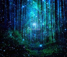 """""""In the magical Forest"""" Tapestry by haroulita Fantasy Forest, Magic Forest, Forest Art, Fantasy Art, Dark Forest, Home Wall Art, Wall Art Decor, Night Forest, Forest Painting"""