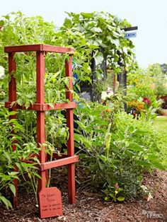 32 Free DIY Tomato Trellis & Cage Ideas to Grow Your Tomato Big and Healthy