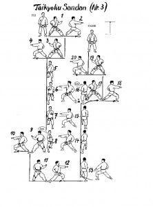 Taikyoku Sandan Martial Arts Styles, Martial Arts Techniques, Mixed Martial Arts, Martial Arts Workout, Martial Arts Training, Aikido, Bruce Lee, Judo, Shotokan Karate Kata