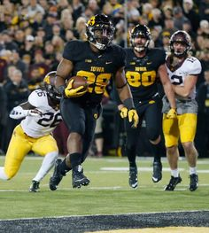 No. 5 Iowa 40, Minnesota 35 | The Gazette owa Hawkeyes running back LeShun Daniels Jr. (29) runs into the end zone to score against Minnesota in a NCAA football game at Kinnick Stadium in Iowa City on Saturday, Nov. 14, 2015. (Adam Wesley/The Gazette)