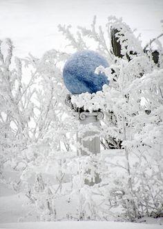 Blue gazing ball...