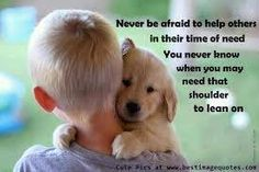 Who Cares, Kinds Of Dogs, You Never Know, Helping Others, Quote Of The Day, Cute Pictures, Beautiful, Funny Life, Quotes