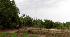Une éolienne permet d'alimenter le système de goutte à goutte pour l'irrigation de champs au Sénégal