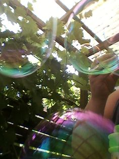 06.07.2015 Une de mes favorites. Deux yeux et un nez!