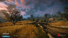 ArtStation - The Witcher 3: Hearts of Stone, Mark Foreman