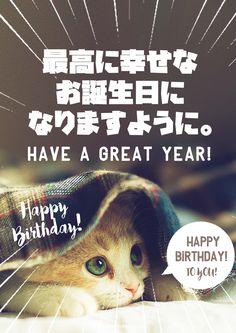 マダムな猫からのありがたいお誕生日メッセージ画像 Happy Birthday Animals Funny, Happy Birthday Messages, It's Your Birthday, Birthday Cards, Message Card, Positive Words, Birthday Photos, Happy Quotes, Birthdays