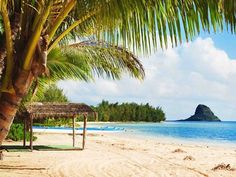 kualoa ranch secret island beach tour