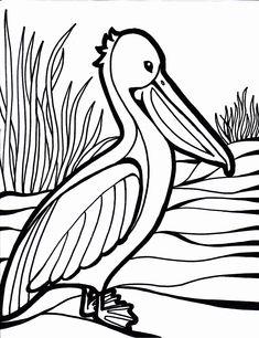 Parrot Coloring Pages | Cinderella | Pinterest | Bird, Adult ...