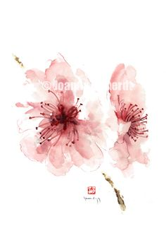 Floral art floral print cherry blossom art by ColorWatercolor, $25.00