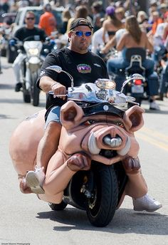 Man on his hog!