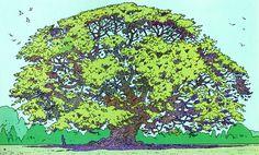Moebius tree