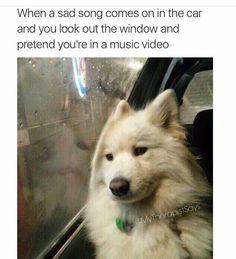 This meme describes me practically everyday.
