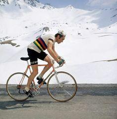 Eddy Merckx, 1975