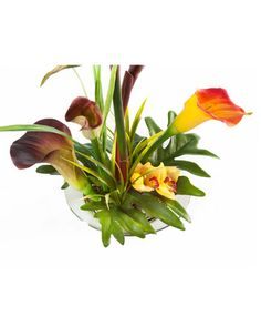 Bird of paradise calla lily silk arrangement a serene and bring a touch of exotic beauty to your home or office with our bird of paradise silk flower arrangements one of many unique designs at petals mightylinksfo