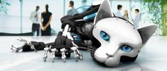 Robot Cats seem just as devious as their traditional counterpart.