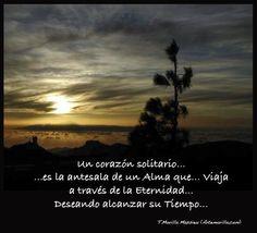 Un corazón solitario... es la antesala de una Alma que... Viaja a través de la Eternidad... Deseando alcanzar su Tiempo... (Tomás Morilla Massieu - Artemorilla.com)