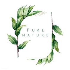 if this was lavender or a mix of lavender, comfrey, and lemons balm ( herbs i resonate with) -Pure nature logo design v Vector Logos, Free Vector Graphics, Plant Logos, Background Design Vector, Leaves Vector, Leaf Logo, Tree Designs, Free Illustrations, Flower Illustrations