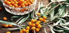 """""""Sea buckthorn berries contain more than 100 different nutrients and phytochemicals—vitamins, fatty acids, free amino acids, flavonols, and carotenoids. They are rich in . Health Tips, Health And Wellness, Diet And Nutrition, Natural Healing, Herbalism, Berries, Cooking Recipes, Herbs, Fruit"""