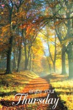 Good Morning Greeting Cards, Good Morning Greetings, G Morning, Thursday, Painting, Art, Art Background, Painting Art, Kunst