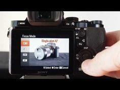 Back-Button AF (autofocus) using a Sony Alpha A7 camera  #sonyalpha #sony-alpha
