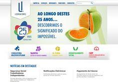 LiConsultores - Website made by WebComum #website #webdesign