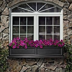 White & Dark Gray with my lt. gray stone exterior (ideas for new color) ~ Add window boxes similar to this.