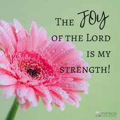 The Joy of the Lord is my Strength!