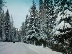 Road to Tamarack Resort, Idaho
