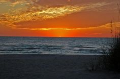 Looking for fun, friendly people who care about the quality of your Anna Maria Island vacation rental experience? Book your beach vacation with confidence. Bradenton Beach, Indian Shores, Holmes Beach, Anna Maria Island, Anna Marias, Enjoy It, Sunsets, Balcony, Condo