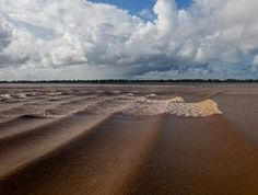 Pororoca Tidal Bore - Pororoca means great destructive noise as a tide 4 meters high travels upstream of the Amazon at 30 mph, and has known to travel for 35 minutes.