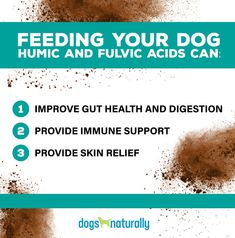 The Dirt On Humic And Fulvic Acid For Dogs ...