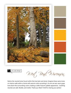 A softer Autumn palette appearance created through the influence of trees and stone.  Landscape Influence - Location: West Bend, Wisconsin  - mejudydesign.com
