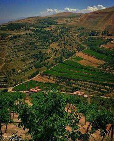 Zahle lebanon